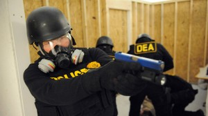 a special agent is one of the most important jobs in the united states drug enforcement administration but many people wonder what dea special agents do
