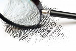 Criminology Internships