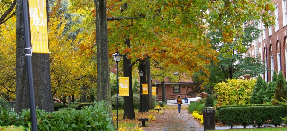 Top 50 most affordable schools for an online master s in homeland security 2017 2018 for Adelphi university garden city